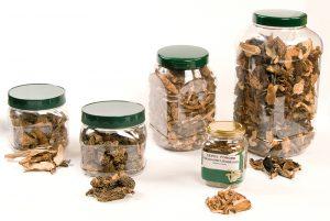 gedroogde-paddenstoelen